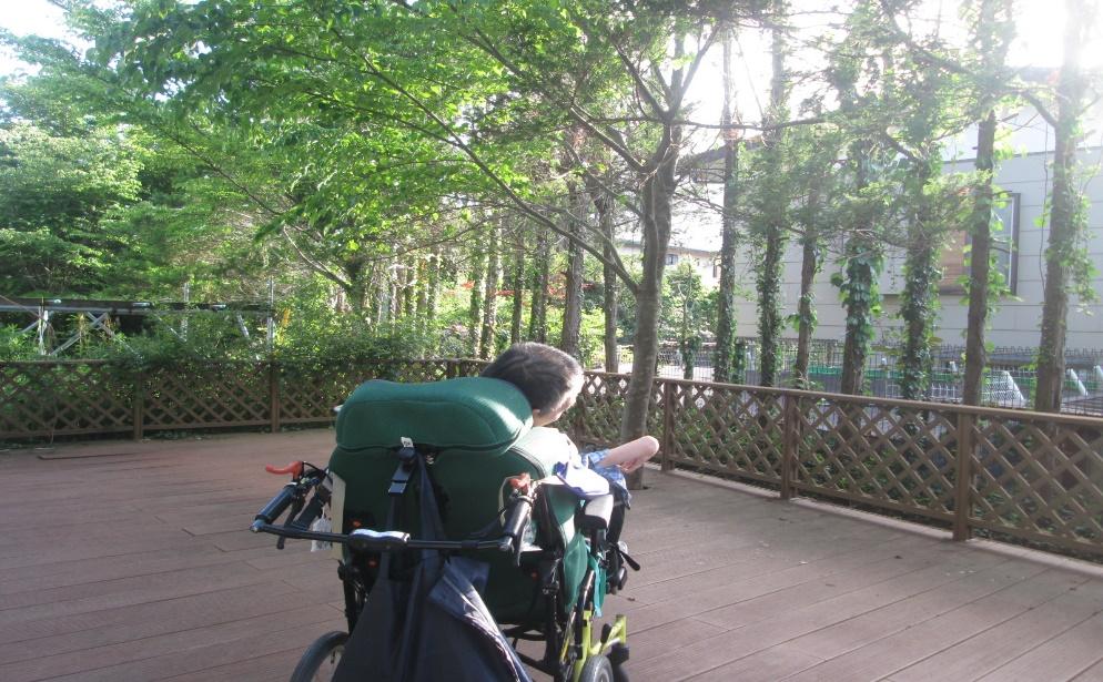 【日常の一コマ】障害者支援施設「水平線」に隠れた名スポット発見。
